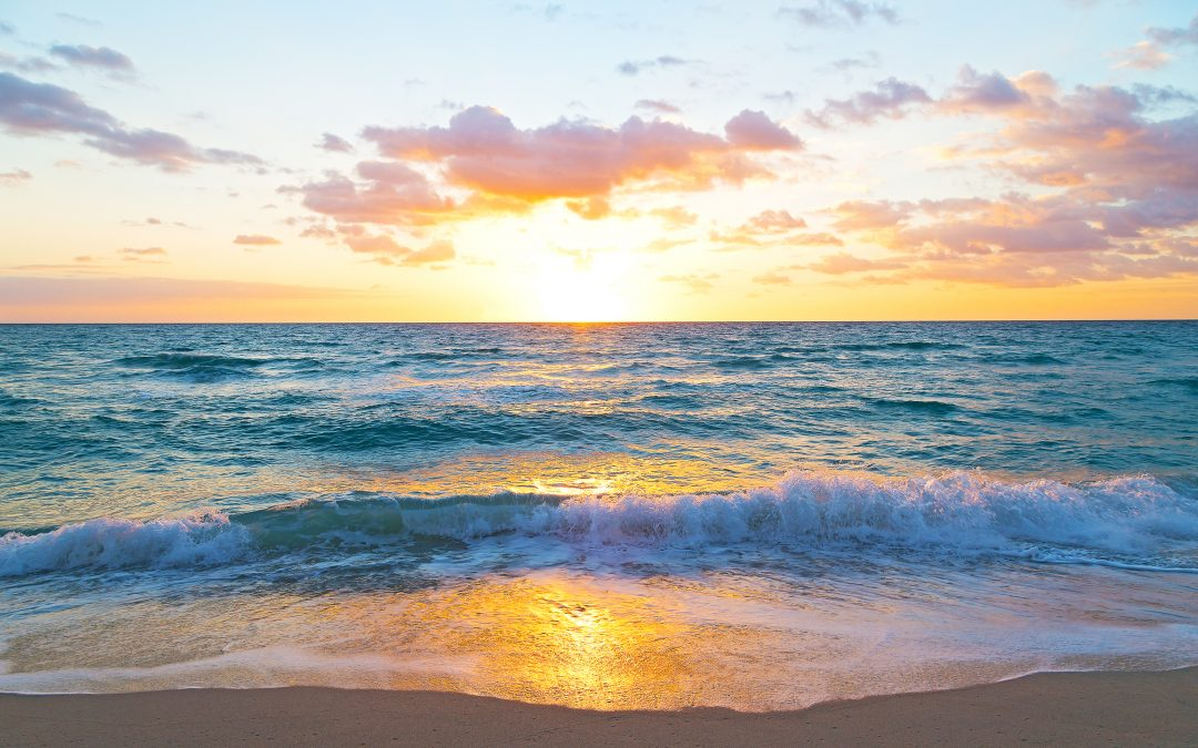 Our TIDE flows with love and acceptance for all